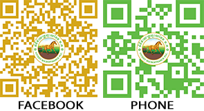 QR code for Facebook and Phone-kh